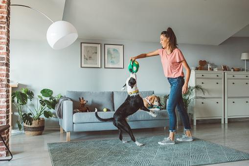 девушка играет с собакой в квартире