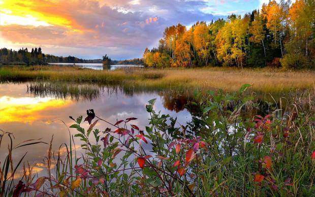 осенний закат на берегу лесного озера