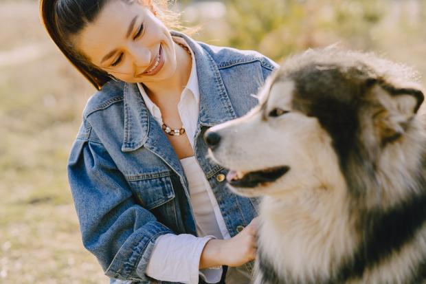 Молодая девушка в джинсовой куртке гладит собаку