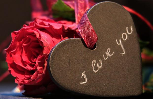 красные розы и сердце