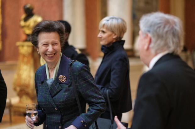 Принцесса Анна широко улыбается на приеме в замке