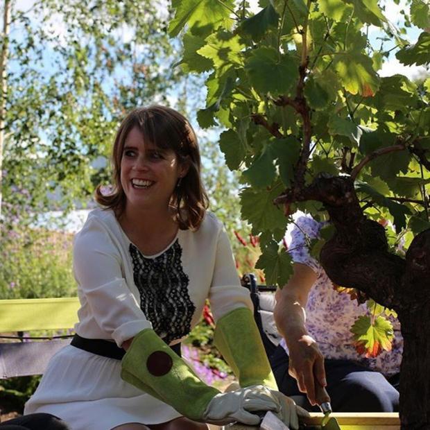 Принцесса в садоводческих перчатках садит дерево