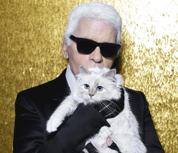 Карл держит на руках любимую кошку