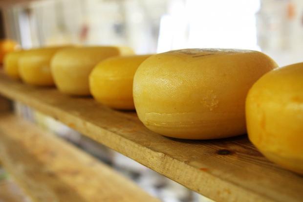 на полке лежат желтые головки сыра