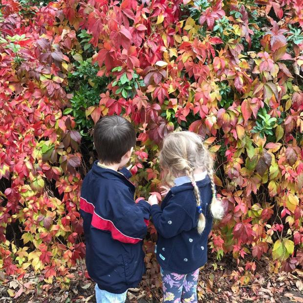 Дети актрисы на фоне осенней изгороди