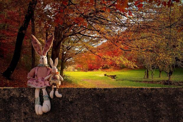 игрушечные зайцы на фоне осеннего леса