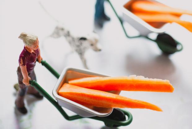 Фигурка женщины катить тележку с морковью