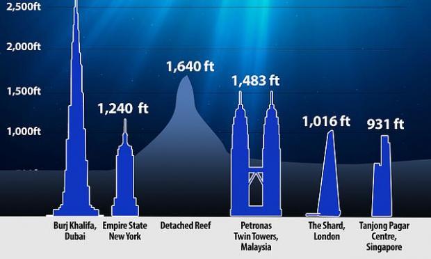 Новый риф на фоне самых известных небоскребов