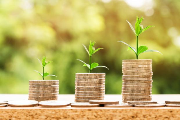 три стопочки монет с зелеными ростками