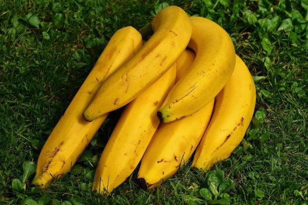 связка бананов на траве