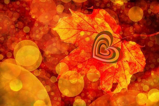красный кленовый лист с нарисованным сердцем