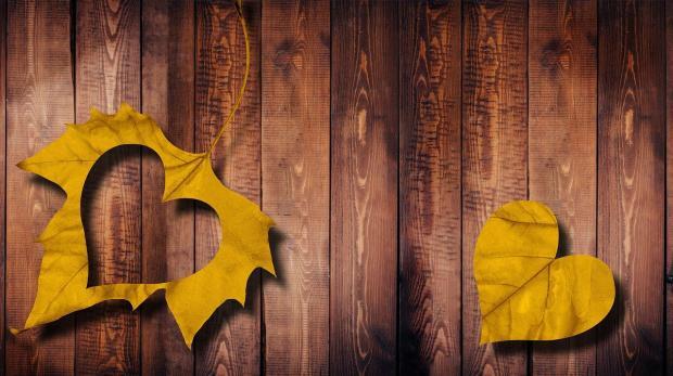 желтый листок с вырезанным из него контуром сердца