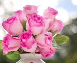 Как сохранить надолго свежесть букета из роз: 8 эффективных методов