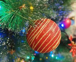 Странный новогодний тренд 2021: популярность набирают елки необычной формы