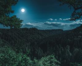 Как на жизнь человека влияют новолуние полнолуние и 6 других фаз Луны
