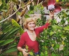 Самая пожилая виндсерферша: 82-летняя жительница Греции попала в Книгу рекордов Гиннеса