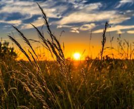 Визуальный тест: духовное послание подарит выбранное солнце