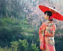 10 принципов японской философии «ичиго ичи» которая учит людей жить настоящим
