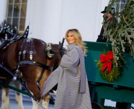 Элегантная Мелания Трамп встретила рождественскую ель 2020 года прибывшую в Белый Дом