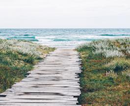 Пачка чипсов 1971 года найдена на пляже Шотландии: что стало с упаковкой за 49 лет