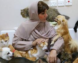 Любительница животных из Омана приютила у себя в доме сотни котов и 12 собак