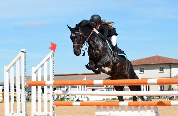 черная лошадь с наездником перепрыгивает через барьер
