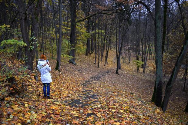 девушка в осеннем лесу или парке