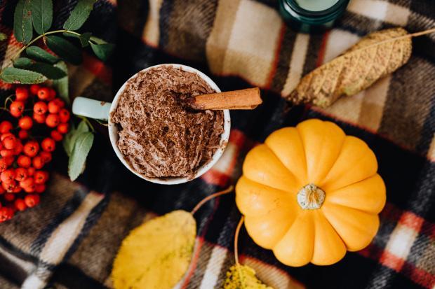 Тыква какао рябина и корица на столе
