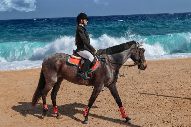 девушка в костюме жокея едет на лошади по берегу моря