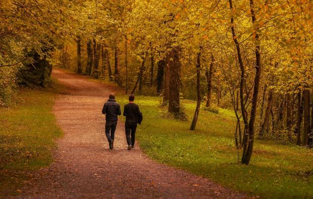 двое мужчин гуляет по лесу