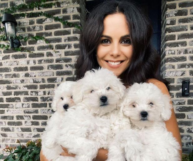 Настя Каменских с маленькими белыми собаками