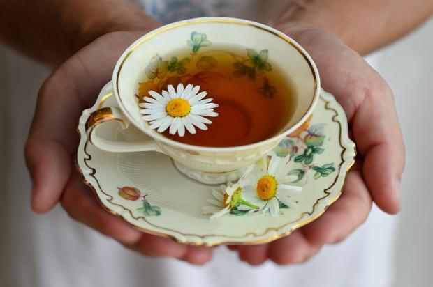 в ладонях чашка травяного чая с ромашкой