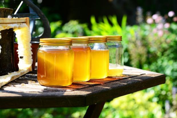 баночки с медом на столе, решетка с сотами и медом