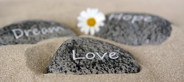 камни с различными надписями и ромашка