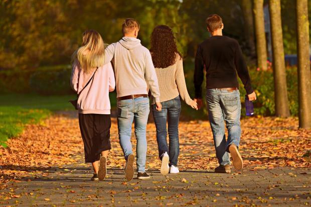 две девушки и два парня прогуливаются по парку
