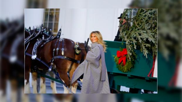 Мелания Трамп встречает ель в Белом Доме