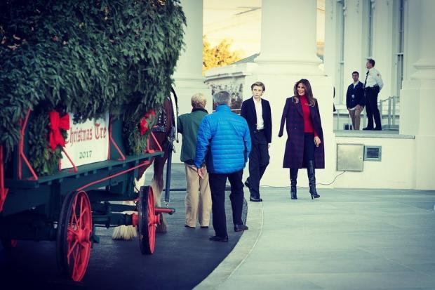 Мелания Трамп встречает елку в Белом Доме