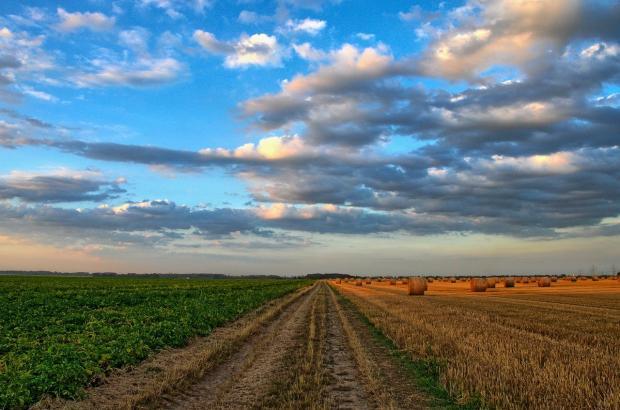 поле и облака
