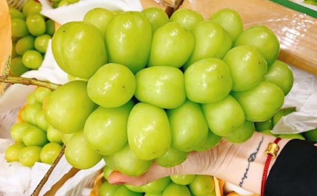 гигантский виноград