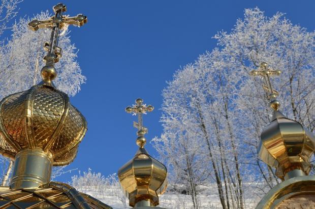 золоченые купола с крестами на фоне покрытых снегом деревьев