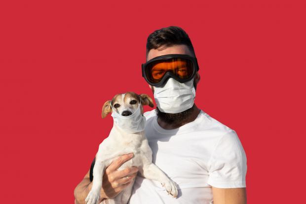 мужчина и собака в медицинских масках