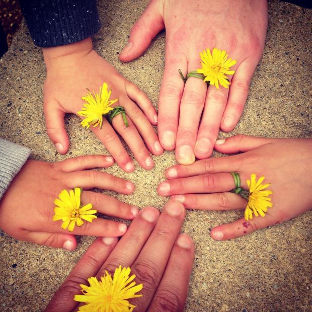 руки взрослых и детей