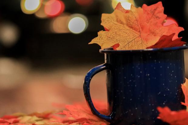 осенние листья в кружке