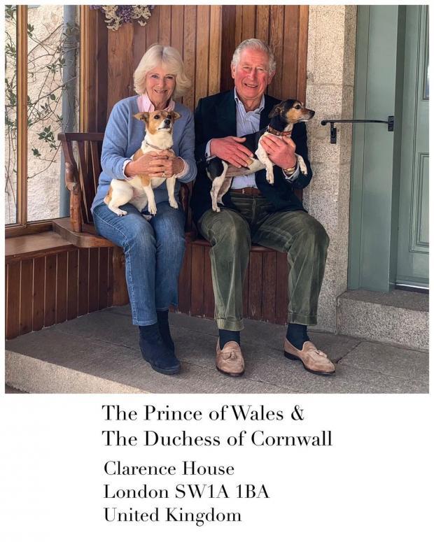 Принц Чарльз и Камилла с питомцами
