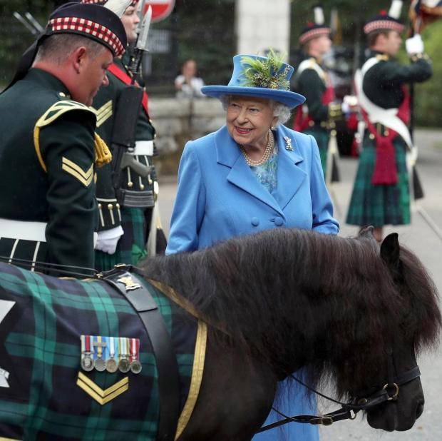 Елизавета II общается с шотландским военным и их талисманом