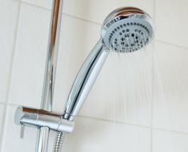 5 способов очистить душ от налета без применения дорогостоящих средств