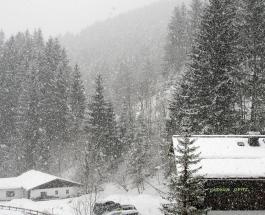 Снегопад обрушился на Японию: тысячи домов остались без электричества