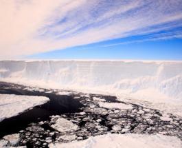 Самый большой в мире айсберг может столкнуться с британским островом и навредить арктическим животным