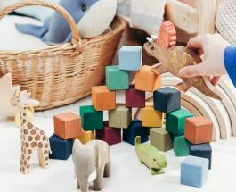 """""""Помощники Санты"""": пара из США изготавливает игрушки чтобы раздать нуждающимся детям"""