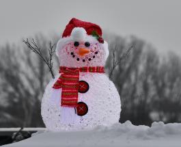 """Милое видео голодного кролика съедающего """"нос"""" снеговика стало вирусным в сети"""